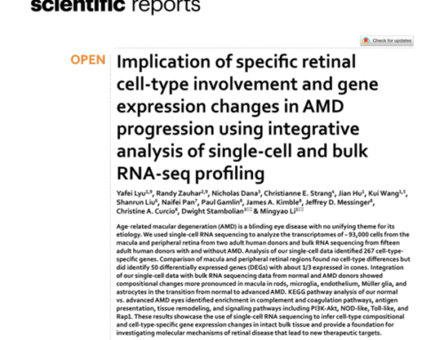 Exciting New Progress to Find a Cure for Macular Degeneration